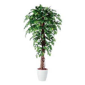 東北花材 人工樹木 フィッカスベンジャミナリアナ