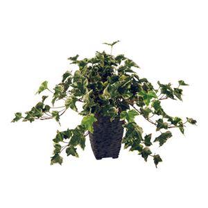 東北花材人工樹木イングリットアイビー90229