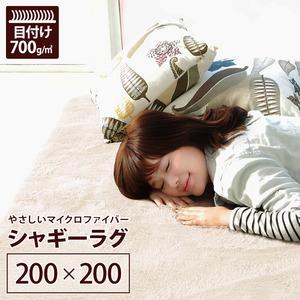 ラグマット洗える2畳正方形(200×200cm)アイボリーホワイト【やさしいマイクロファイバーシャギーラグ】〔北欧風丸洗いカーペット〕