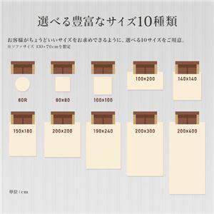 低反発 ラグ ブラウン 茶色 極厚 2畳 200×200  正方形 【やさしいフランネル防音低反発ラグ】 遮音 防音マット ノンホル ラグマット