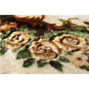 花柄 ラグマット/絨毯 【200cm×300cm ブラウン】 長方形 ホットカーペット 床暖房対応 『リオ3』