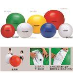 エバニュー(EVERNEW) カラー大玉 70 白 EKA597 日本製