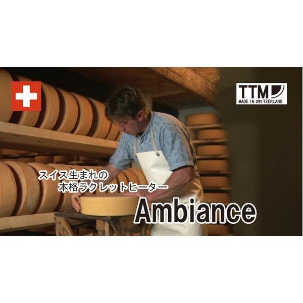 TTM Ambiance アンビエンス 業務用ラクレットヒーター 5