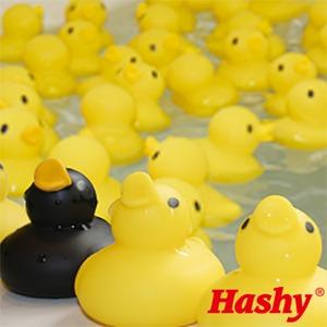 知育玩具/お風呂用おもちゃ 【あひる風呂】 50匹セット PVC製 『HaShy』 〔浴室 シャワールーム〕