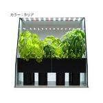 箱庭栽培 Piccola(ピッコラ) クリアタイプ 室内家庭菜園キット WF-01C