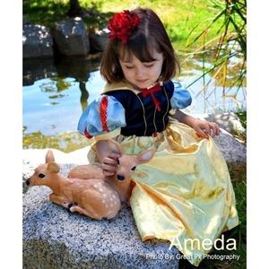 白雪姫ドレス豪華フルセット(L:130cm)