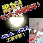 Wセンサー内蔵電球人が来たら自動点灯、勝手に消灯で省エネ 昼白色電球【1個組】
