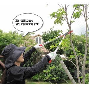 ZACT 太枝切鋏 ANG-650  【ローズレッド】