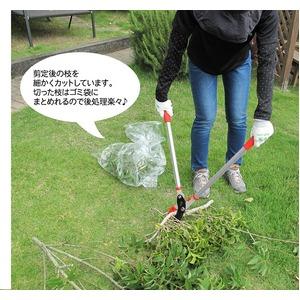 ZACT 太枝切鋏 ANG-500  【ローズレッド】