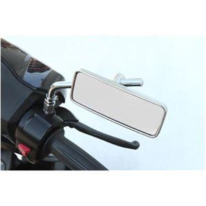 タナックス(TANAX) リトラミラー メッキ シルバー鏡 10mm正ネジ 左右共通 AVA-101-10