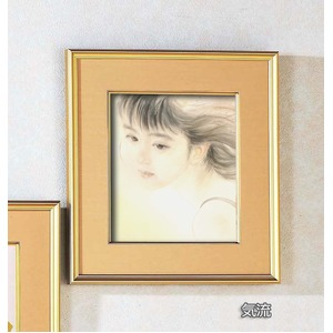 色紙額縁セット/金フレーム 【421mm×390...の商品画像