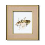 色紙273×243mm【いわさきちひろの世界】額装品 ■いわさきちひろ色紙額(4988金)「少女像」