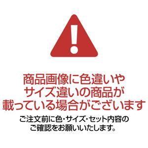 東京西川 お買得座布団カバー5枚組 【ブルー 1: 銘仙判(約55×59cm)】