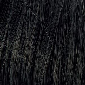 メンズヘアピース ダンディヘア 【自然な黒】