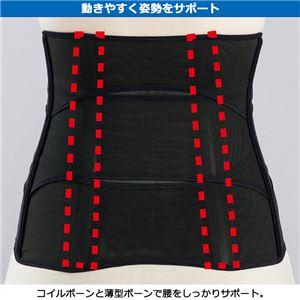 お腹シェイプサポーター 【ブラック1枚 M : M】