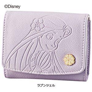 ディズニープリンセスウォレットシリーズ 【ラプンツェル 2: カードケース】