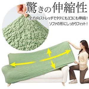タテヨコのびのびフィット式ソファーカバー チョコ 【5: ヒジ無 2人掛】 f05