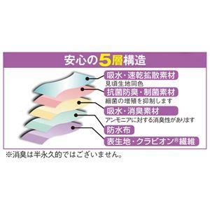 抗菌消臭お買得安心ショーツ3色組 【L: L】