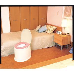 パナソニックエイジフリーライフテック 樹脂製ポータブルトイレ ポータブルトイレポケット付DX VALPTHBEDX