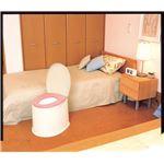 パナソニックエイジフリーライフテック 樹脂製ポータブルトイレ ポータブルトイレポケット付DX VALPTHBEDXの画像