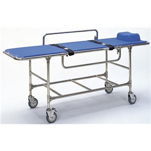 日進医療器 施設用家具・備品 浴室用ストレッチャー 固定式 TY222ESS TY222ESS - 拡大画像
