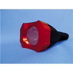LEDフラッシュライト(懐中電灯) アルミニウム設計/フラットハンドル ブッシュネル 【日本正規品】 ブラッドハンターHD