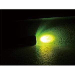 カラーフィルター4色セット(ワルサープロPL70/70r用アクセサリー) 赤/青/黄/緑 〔手元照射/夜間動物観察/体液検出/霧対応等〕