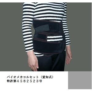 バイオメカコルセット(愛知式)特許第4997612号