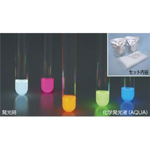 (まとめ)化学発光液(AQUA) A200-G(緑)【×5セット】の詳細を見る