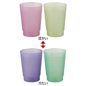 (まとめ)感温へんしょくカップ ST54 入数:ピンク色(変色後:紫色)1個黄色(変色後:緑色)1個【×20セット】の詳細を見る
