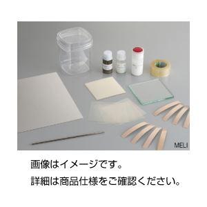 EL材料製作キット MELIの詳細を見る