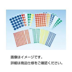 (まとめ)ポイントラベル L【×10セット】