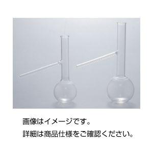 (まとめ)枝付フラスコ 50ml【×3セット】