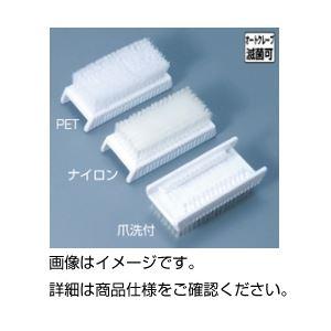 (まとめ)手洗いブラシ 爪洗付【×10セット】の詳細を見る