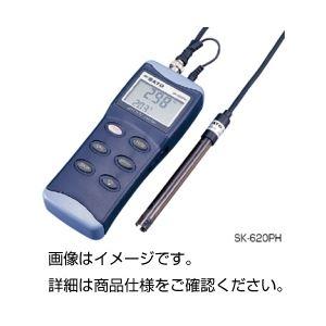 ハンディ型pH計 SK-620PHの詳細を見る