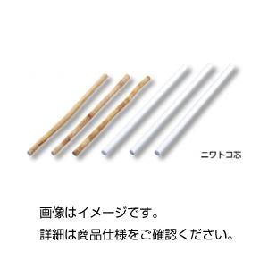 (まとめ)ニワトコ芯(ピス)10本発泡ポリスチレン【×10セット】の詳細を見る