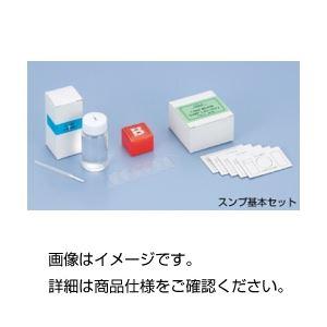 (まとめ)スンプ基本セット B板セット【×3セット】の詳細を見る