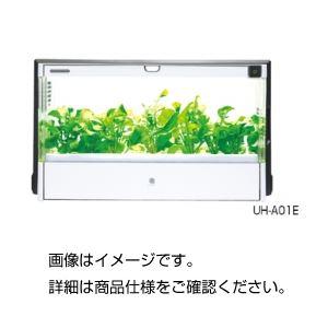 【訳あり・在庫処分】水耕栽培器GreenFarm UH-CB01GWの詳細を見る
