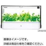 水耕栽培器GreenFarm UH-CB01GW