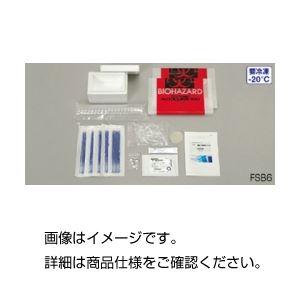 (まとめ)DNA鑑定キット FSB8【×3セット】の詳細を見る