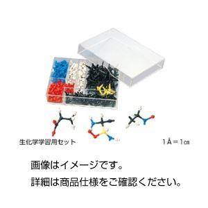 (まとめ)HGS生化学学生用分子模型 生化学学習用セット【×5セット】の詳細を見る