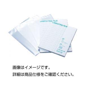 (まとめ)ラミネートフィルム A6 入数:100枚【×5セット】の詳細を見る