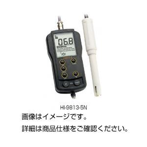 多機能計 HI-9813-5Nの詳細を見る