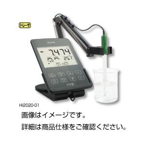 タブレット型pH計 edge HI2020-01の詳細を見る