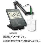 タブレット型DO計 edge HI2040-01