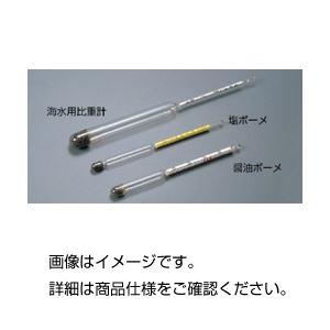 (まとめ)ボーメ比重計 塩ボーメ【×10セット】の詳細を見る