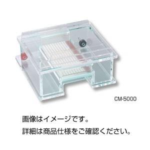 (まとめ)水平型電気泳動装置 CM-5000【×3セット】の詳細を見る