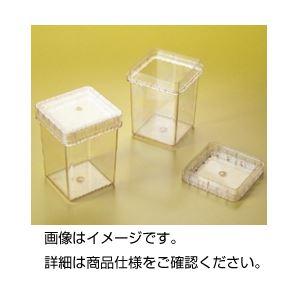 (まとめ)プラントボックス300ml 1個【×20セット】の詳細を見る
