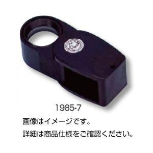 シュタインハイル・ルーペ1985-10の詳細を見る