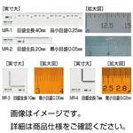 (まとめ)顕微鏡用マイクロルーラーMR-2(5枚組)【×3セット】